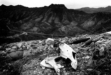 The killing fields, known locally as Death Valley, contain the corpses of Iraqi soldiers who could not be retrieved due to heavy mining. Millions of landmines and unexploded ordnance litter the former...