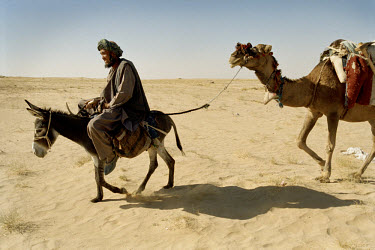 An Uzbek man wends his way through the desert, with camels in train.