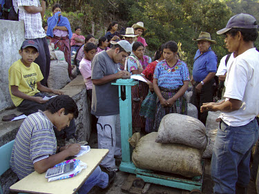 Growers having their organic coffee beans weighed at the local co-operative.