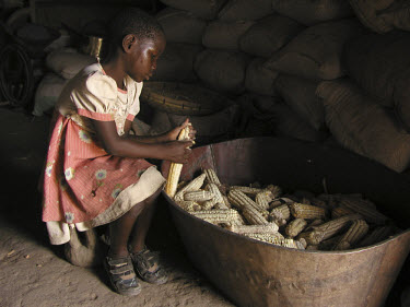 7 year-old Constance Mabo removes corn from the husk.