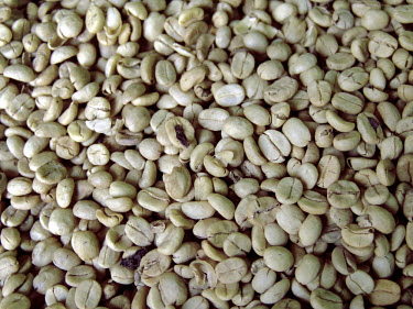 Locally harvested organic coffee beans.