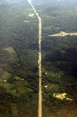 A road cuts through the Amazon rainforest.