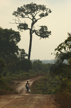 A woman walks along the BR163 highway which serves as a major transport thoroughfare extending through the Amazon rainforest, around which farms are being set up by agribusinesses.