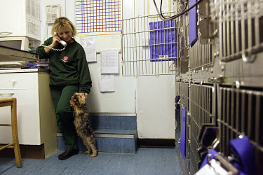 Polish veterinarian talking on the telephone during a night shift at a surgery in Watford.