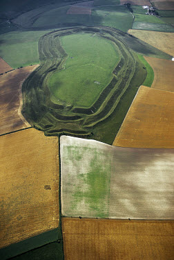The hillfort at Maiden Castle, whose defensive ditches are visible. Occupation of the site began in the Neolithic period, around 3000 BC. (97)