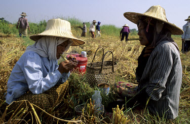 Two women take a cigar break during the paddy harvest.
