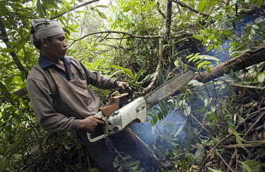 Hariyanto Manalu chops down a tree as he clears forest in preparation to expand the Duta Palma palm oil plantation.