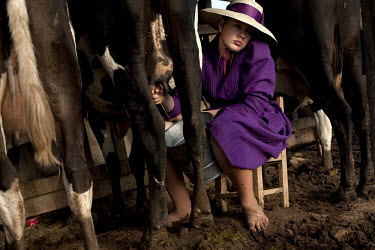 A girl milks a cow on a farm in a Mennonite village. Near the city of Santa Cruz, there are about 15,000 Mennonites living in isolated communities. Mennonites are a group of Christian Anabaptists, par...