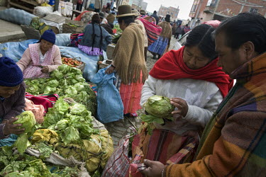 38 year old wrestler Carmen Rosa (fighting name), Polonia Ana Choque Silvestre (real name) checks a lettuce at a market in El Alto with her husband. Polonia is a Cholita, a wrestler of native Aymara d...