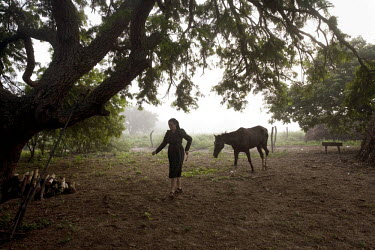 A woman walks with her horse in a Mennonite village. Near the city of Santa Cruz, there are about 15,000 Mennonites living in isolated communities. Mennonites are a group of Christian Anabaptists, par...