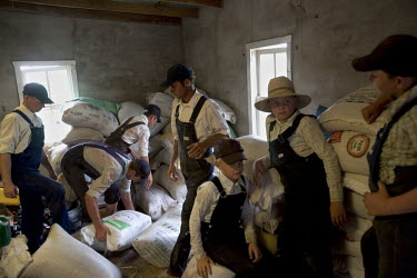 Men and boys load sacks into a storage room in a Mennonite village. Near the city of Santa Cruz, there are about 15,000 Mennonites living in isolated communities. Mennonites are a group of Christian A...