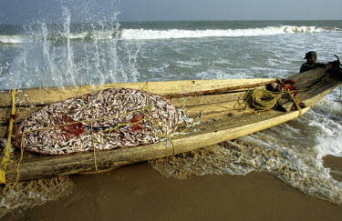 A fisherman returns to shore with his Kattumaram raft and a net bursting with fish.