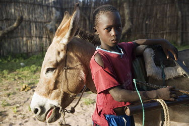 A young boy standing with a donkey.