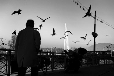 Businessman walks past a flock of birds by the lake front, with the Jet d'eau behind.