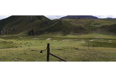 Fencing divides the grasslands, supplied free by the Chinese government as a measure perceived to protect the rangeland but criticised for being detrimental to wildlife and culture on a tributary of t...