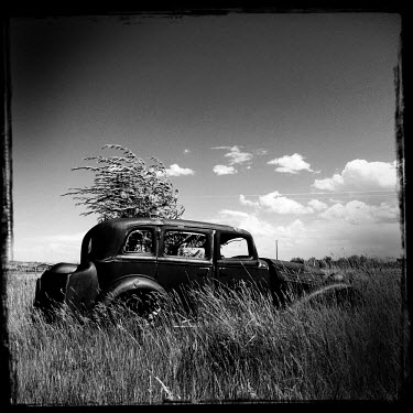 A rusting remnant of a vintage car stands in a field.