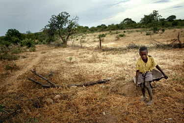 A boy pulls a wheelbarrow across scrubland. There are no adults in his household only children.