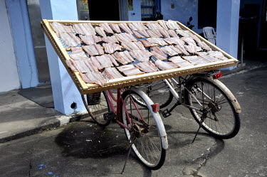 Fish drying on a rack supported by a pair of bicycles.