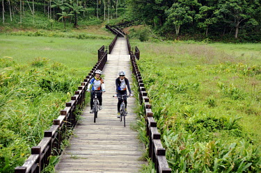 Cycists cross a boardwalk through wetlands just north of Kenting National Park.