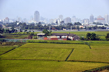 A farmstead and rice fields with modern Taichung City in the background.
