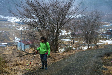 Raquel Monton, head of Greenpeace's anti-nuclear energy campaign, measuring radiactivity near the village of Itate. Radiation levels remains above levels permitted by the government following the 2011...