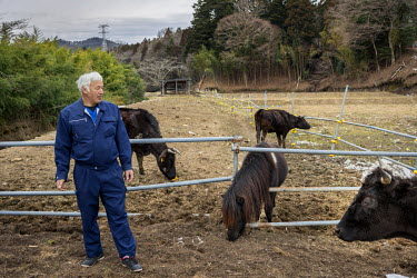 Mr Matsumura walking in the ghost town of Tomioka. Following the 2011 Fukushima Daiichi nuclear disaster, the town's 14,000 residents were evacuated but Mr Matsumura refused to leave and stayed on to...