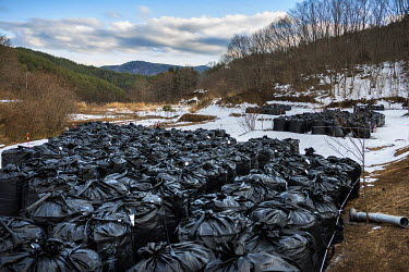 Sacks of contaminated topsoil and other radioactive waste which have been removed from contaminated areas as part of the clean up process following the 2011 Fukushima Daiichi nuclear disaster. Each ba...