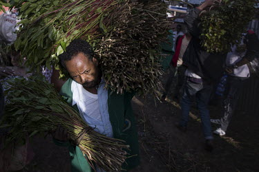 A worker in Aweday, a big hub for the qat trade, carries fresh bundles of qat to a stall where it will be repacked and distributed the very same day to different locations in Ethiopia and abroad.