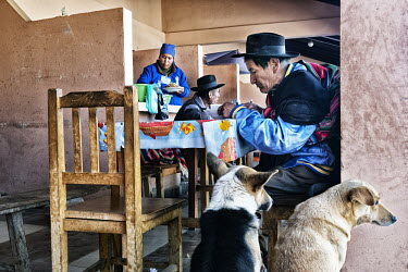 Dogs begging for food at a village restaurant.