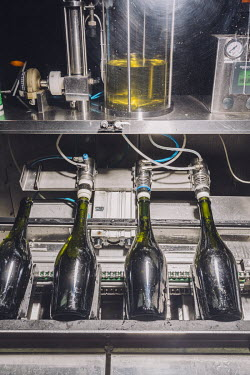 Bottles of sparkling, organic white wine are corked and labelled for distribution at the Tikal Natural Vineyard.   The owner of the vineyard, Ernesto Catena, hails from one of the most influential w...