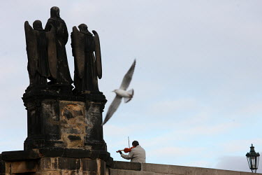 A busker playing a violin, a seagull and a sculpture on the Charles Bridge.
