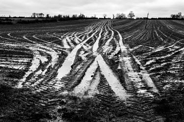Tractor's tyre marks in a waterlogged agricultural field, after days of heavy rainfall.
