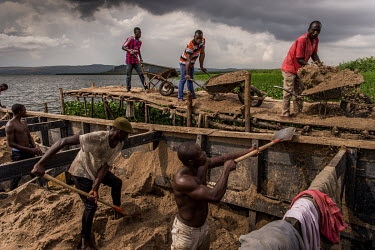 Sand miners shovel loads from a barge on to wheelbarrows that their colleagues are struggling to balance on a rickety wooden pier. The sand was harvested by this team on the island of Namugongo, 12 ho...