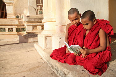 Two novice monks share a book at a pagoda.