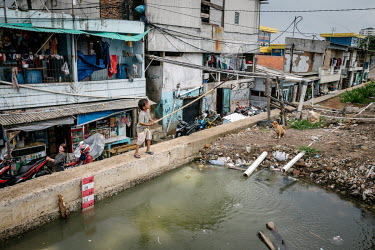A boy plays with a fishing net beside a deep pool of water that has formed behind a secondary wall protecting shops and homes from being inundated by sea water in Pluit, one of Jakarta's most flood-af...