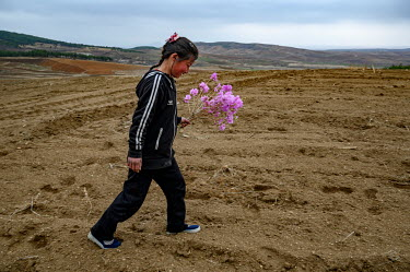 Children carry home bouquets of flowers they have picked nearby.