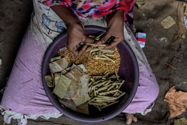 Payal Khatoon (11) makes bidi (cigarettes) with her family, including her mother and grandmother, at a small house in bidi worker's colony in Aurangabad in Murshidbad district. Payal has started learn...