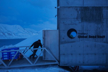 A worker from the Nordic Genetic Resource Centre (NordGen) unloads seed samples for storage in the Global Seed Vault where, in recent years, the main tunnel has experienced some flooding due to permaf...