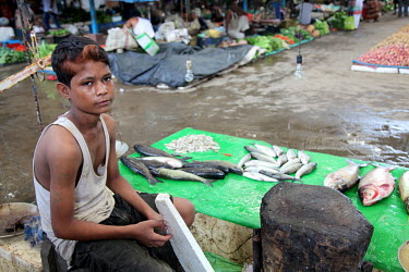 A boy sells fish from a small market stall.