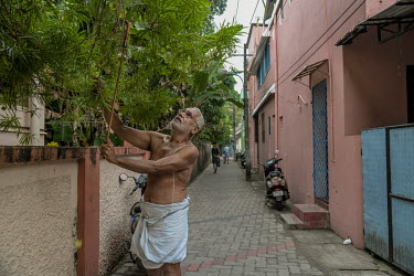 A man picks flowers from a tree in the old part of Fort Kochi.
