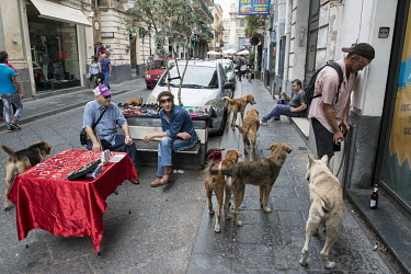 David, a homeless man originating from South Africa, stops to force the cap off a bottle of beer as he walks his 11 dogs through the streets of the city.