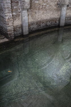 Goldfish swim over mosaics in the flooded crypt in the church of San Francesco (Basilica de San Francesco).