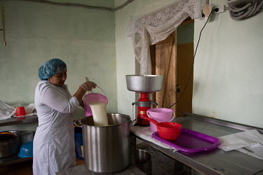 Tamara pours milk into a cream separator on the Kulu farm. Kulu is a former sovkhoz (Soviet-era state-owned farm) established in 1970s to provide dairy products and vegetables for mining towns located...