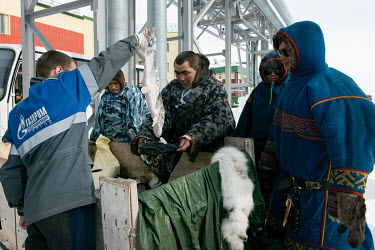 Indigenous Nenets, Roman and Eduard, selling fish to the workers at the Gazprom Bovanenkovo gas field. The nomadic Nenets can ride over 200 km on a snowmobile in order to sell their goods. They do not...