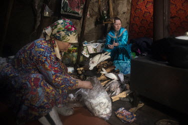 Indigenous Nenets women, Lyubov and Lyudmila (R), preparing partridge for lunch.   There is a strict segregation of duties in a daily life of nomadic Nenets. Women maintain the fire in the stove, co...