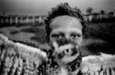 A boy holds an owl in a small village in the interior of Bahia State.