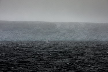 The A68, the world's largest iceberg floats in the Southern Ocean between the South Orkney Islands and the South Shetland Islands. A68 calved from the edge of the Larsen C Ice Shelf in July 2017.  T...