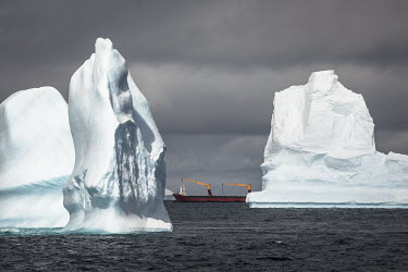 Trinitas, a Norweigan reefer, sailes among icebergs off the South Orkney Islands.  The Greenpeace ship MY Esperanza is on the final leg of the pole to pole voyage from the Arctic to the Antarctic. T...