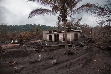 The top part of a home remains above ground after it was covered by volcanic debris in the community of San Miguel los Lotes following a violent eruption by the Fuego Volcano which completely destroye...