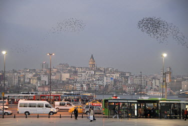 A flock of starling during a murmuration in the evening above Eminonu. In the background is the Galata Tower or Galata Kulesi.